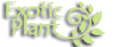 Exotic Plant Productions S.R.L. logo